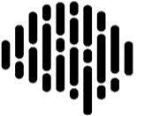 NewtonX logo