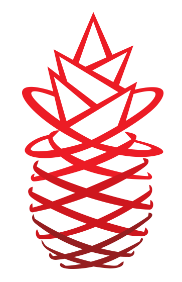 Red Pineapple Media GmbH logo